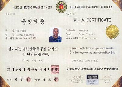 7 Grand Master George Somersall - KHA Certificate - Korea